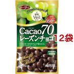 果実ヴェール カカオ70 レーズンチョコ ( 40g*12コセット ) ( チョコレート バレンタイン 義理チョコ )