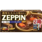 カレーゼッピン 辛口 ( 175g*2コセット )/ ZEPPINシリーズ