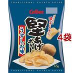 堅あげポテト うすしお味 ( 65g*4コセット )/ カルビー 堅あげポテト