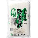 精米 太鼓判 長野県産 ひとめぼれ 5kg