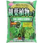 サンアンドホープ 観葉植物の土 ステビア配合 ( 5L )/ サンアンドホープ