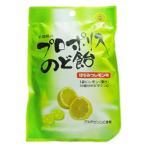 プロポリスのど飴 はちみつレモン味 ( 46g ) ( はちみつレモン 乾燥対策 )