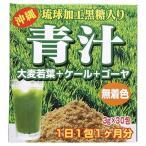 青汁 琉球加工黒糖入り ( 3g*30包 )