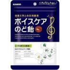 カンロ ボイスケアのど飴 ( 90g ) ( 飴 乾燥対策 のど飴 )