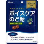 カンロ ボイスケアのど飴 ( 70g ) ( 乾燥対策 )