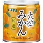 Kanpy(カンピー) 国産 大粒みかん ( 190g )/ Kanpy(カンピー)