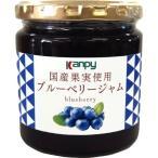 カンピー 国産果実使用 ブルーベリージャム ( 260g )/ Kanpy(カンピー)