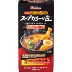 スープカリーの匠 ペーストタイプ 濃厚スープ 119g
