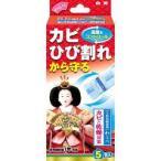 人形用調湿剤 わらべ カビと乾燥対策 ( 5包入 )/ わらべ ( 除湿剤 湿気取り お雛様 ひな人形 )