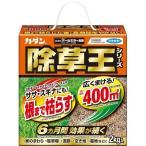 カダン 除草王シリーズ オールキラー粒剤 ( 2kg )/ カダン