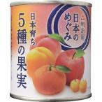 日本のめぐみ 日本育ち 5種の果実 ( 215g )