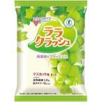 (訳あり)蒟蒻畑 ララクラッシュ マスカット味 ( 24g*8コ入 )/ 蒟蒻畑