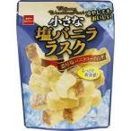 Yahoo! Yahoo!ショッピング(ヤフー ショッピング)(企画品)しっとり食感の小さな塩バニララスク ( 47g )
