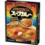 マジックスパイス スープカレー スペシャルメニュー ( 307g ) ( スープカレー レトルト レトルト食品 )