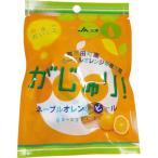がじゅり!ネーブルオレンジ ( 25g )