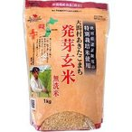 大潟村あきたこまち 発芽玄米 無洗米 ( 1kg ) ( 発芽玄米 無洗米 )
