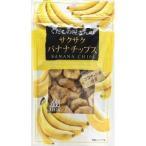くだもの屋さんのサクサクバナナチップス ( 100g )/ くだもの屋さん ( バナナチップス )
