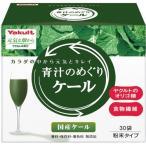 元気な畑から 青汁のめぐり ケール ( 30袋入 ) /  元気な畑 ( 青汁 ヤクルト 青汁のめぐり )