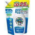 ヤシノミ洗剤 ヤシノミ洗たく用洗剤 コンパクトタイプ 特大 つめかえ用 ( 900mL )/ ヤシノミ洗剤