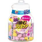 噛むブレスケア アソート ( 80粒 )/ ブレスケア ( 口臭予防 )