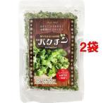マルシンフーズ 乾燥パクチー ( 16g*2袋セット )