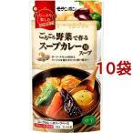 ごろごろ野菜で作る スープカレー用スープ 750g×10袋