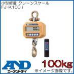 防塵・防水クレーンスケール(100kg) FJ-K100i エー・アンド・ディ A&D