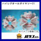 ハイレグオールダイヤソー21(外径:100mm・刃数:12P) HODX-100 ハウスビーエム