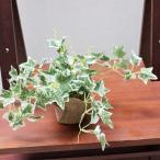 人工観葉植物 ミニポットオランダアイビー 造花 フェイクグリーン