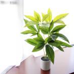 人工観葉植物 フォーチュンツリー 50cm 光触媒