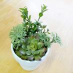 人工観葉植物 光触媒 ミックスサッカランポット(エケベリア) 15cm 造花 フェイクグリーン
