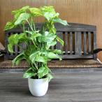 人工観葉植物 光触媒 フレッシュポトスポット 40cm 造花 フェイクグリーン