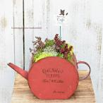 セダム&多肉植物 ギャザリング ティーポット風ブリキ Red 開店お祝いプレゼント