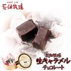 花畑牧場 生キャラメル チョコレート 8粒入 冷蔵 北海道