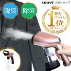 SOUYI ソウイ 衣類スチーマー アイロン 衣類 壁掛け スチーム 衣類用 スチーマー ハンディアイロン ハンディスチーマー コンパクト コード付き