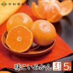 早和果樹園 味こいみかんミニ 2Sサイズ 5kg【送料無料】国産 有田みかん