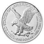 イーグル銀貨 1オンス クリアケース入り アメリカ造幣局発行 (ランダム・イヤー) 31.1gの純銀 高純度 シルバーコイン 保証書付き