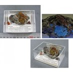 オーストリア琥珀原石blapiz-0881