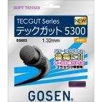 GOSEN ゴーセン ソフトテニス ストリングス テックガット5300 ブラック SS603BK