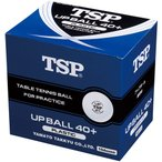 TSP 【卓球用練習球】アップボール40+練習球 10ダース入 010047