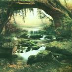 [1/6Doll・ネオブライス用][20cmDoll・ミディブライス用]Blythe背景布(湿地帯/192)