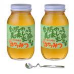 鈴木養蜂場 はちみつ 大瓶2本セット(菜の花1.2kg、レンゲ1.2kg、はちみつスプーン)送料無料 オーガニック クローバー 蜂蜜