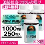 L-リジン 1000mg 250粒 3本セット ソースナチュラルズ 大容量