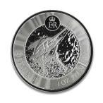ケイマン諸島 2019年 未流通品 銀貨 1オンス 趣味 収集 コインケース