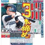 スポーツニッポン東京最終6月15日付特報版