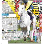 スポーツニッポン東京最終4月12日付特報版