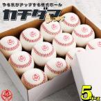野球/硬式ボール/練習球/5ダース/カチダマ/b004-5d