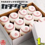 野球/硬式ボール/1ダース/硬式野球ボール/練習球/カチダマ/b004-d