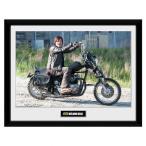 Yahoo!SPORTS STUDIO Yahoo!店The Walking Dead ウォーキング デッド ピクチャー ダリル 16 x 12 / ポスター