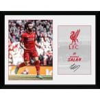 Liverpool F.C. Picture Salah 16 x 12 / リヴァプールFCピクチャーサラ16×12